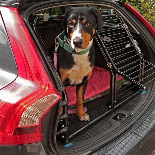 Koirahäkit Autoon