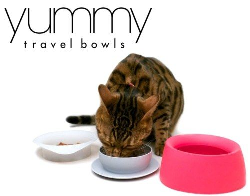 Yummy Travel Bowl